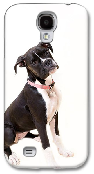 Boxer Galaxy S4 Cases - Boxer Girl 2 Galaxy S4 Case by Rebecca Cozart
