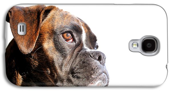 Boxer Galaxy S4 Cases - Boxer Galaxy S4 Case by Jana Behr