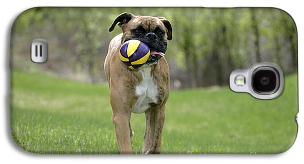 Dog Playing Ball Galaxy S4 Cases - Boxer Playing With Ball Galaxy S4 Case by Rolf Kopfle