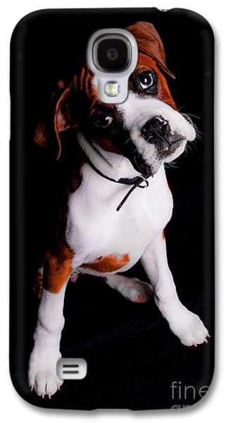 Boxer Galaxy S4 Cases - Boxer Pup Galaxy S4 Case by Jt PhotoDesign