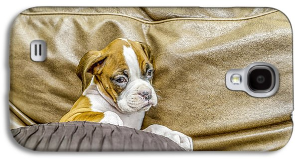 Boxer Puppy On Couch Galaxy S4 Case by Tony Moran