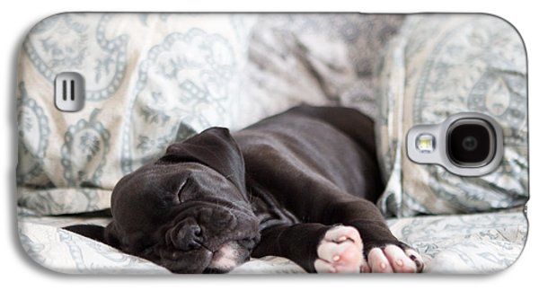 Boxer Galaxy S4 Cases - Boxer Puppy Sleeping Galaxy S4 Case by Stephanie McDowell