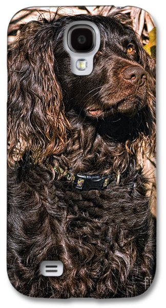 Boykin Spaniel Portrait Galaxy S4 Case by Timothy Flanigan