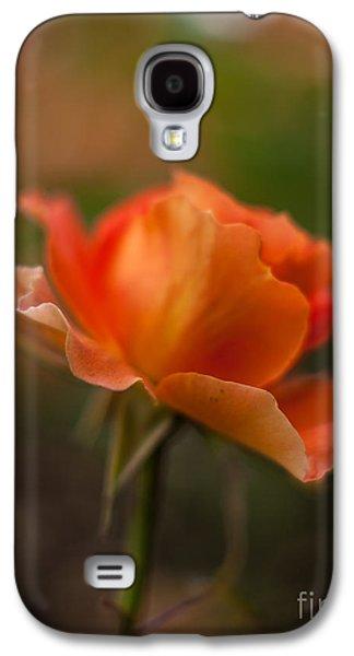 Floribunda Galaxy S4 Cases - Brass Band Flourish Galaxy S4 Case by Mike Reid