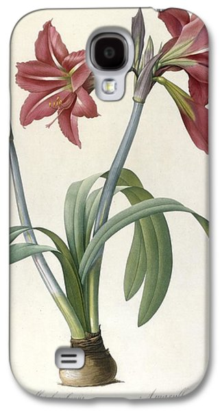Spring Bulbs Paintings Galaxy S4 Cases - Brazilian Amaryllis Galaxy S4 Case by Pierre Joseph Redoute