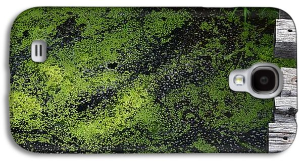 Alga Galaxy S4 Cases - Bridge Over The Algae 2  Galaxy S4 Case by Lyle Crump