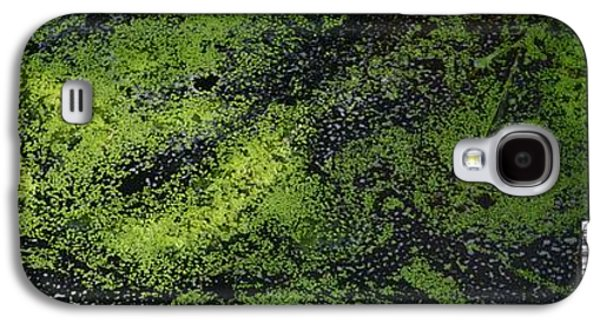 Alga Galaxy S4 Cases - Bridge Over The Algae 3  Galaxy S4 Case by Lyle Crump