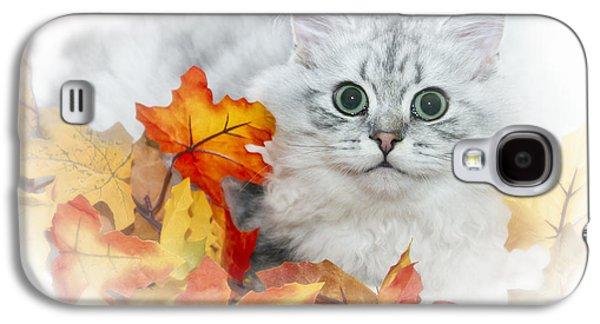 Breed Digital Art Galaxy S4 Cases - British Longhair Cat Galaxy S4 Case by Melanie Viola