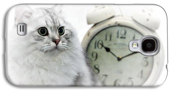 Breed Digital Art Galaxy S4 Cases - British Longhair Cat Time Goes By II Galaxy S4 Case by Melanie Viola