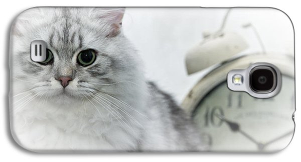 Breed Digital Art Galaxy S4 Cases - British Longhair Cat Time Goes By Galaxy S4 Case by Melanie Viola