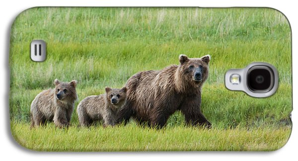 Harts Galaxy S4 Cases - Brown Bear Sow Walks With Her Cubs Galaxy S4 Case by Cathy Hart