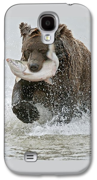 Brown Bear With Salmon Catch Galaxy S4 Case by Gary Langley