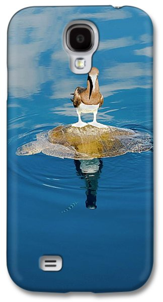Brown Booby And Marine Turtle Galaxy S4 Case by Christopher Swann