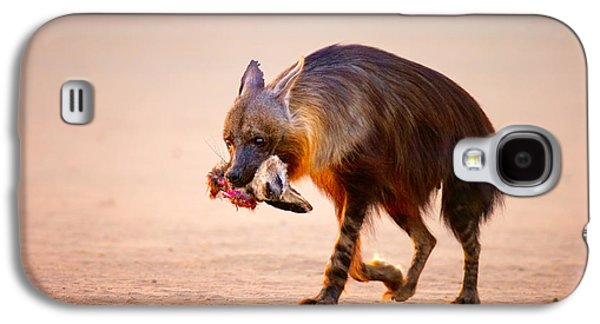 Open Photographs Galaxy S4 Cases - Brown hyena with bat-eared fox in jaws Galaxy S4 Case by Johan Swanepoel