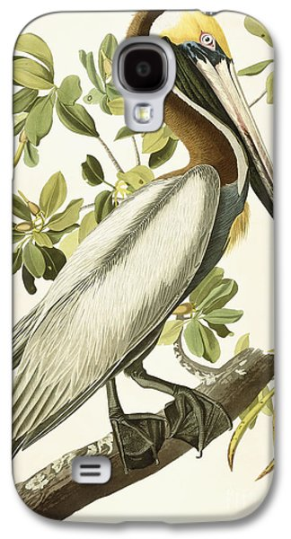 Nature Drawings Galaxy S4 Cases - Brown Pelican Galaxy S4 Case by John James Audubon