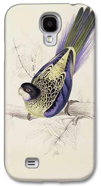 Browns Parakeet Galaxy S4 Case by Edward Lear