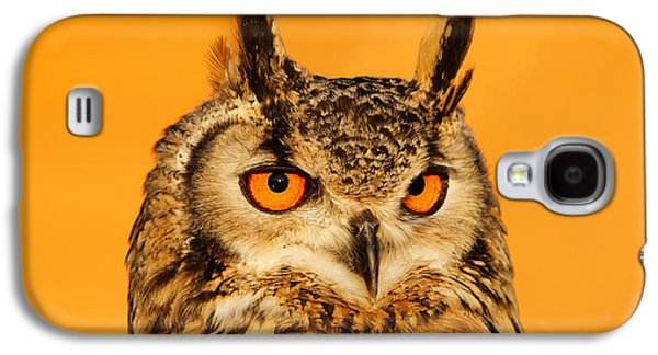 Orange Photographs Galaxy S4 Cases - Bubo Bubo Galaxy S4 Case by Roeselien Raimond