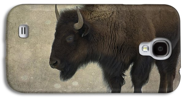 American Bison Galaxy S4 Cases - Buffalo Galaxy S4 Case by Juli Scalzi