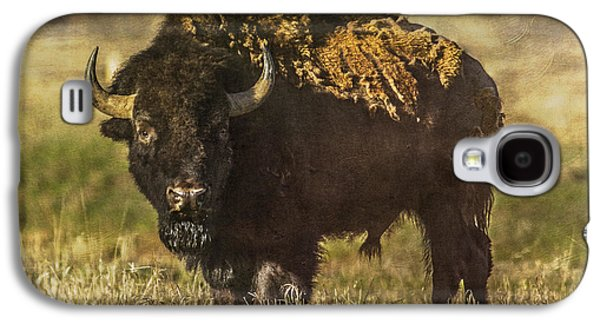 Bison Digital Art Galaxy S4 Cases - Buffalo Galaxy S4 Case by Lou  Novick