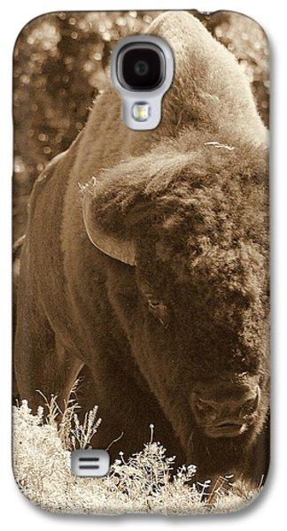 Landmarks Photographs Galaxy S4 Cases - Buffalo Galaxy S4 Case by Mickey Harkins