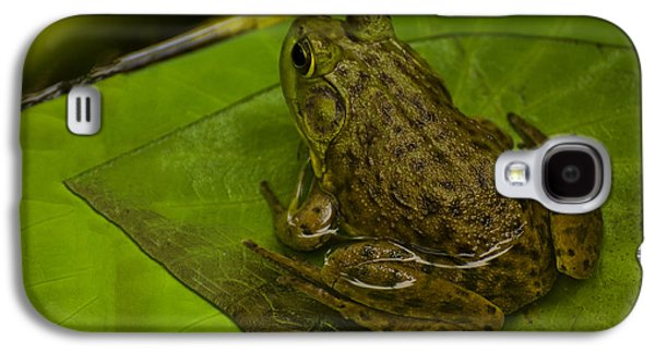 Lilly Pad Galaxy S4 Cases - bull frog on a Lilly pad Galaxy S4 Case by Chris Flees