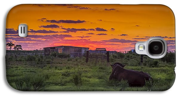 Country Dirt Roads Galaxy S4 Cases - Bull Sunset Galaxy S4 Case by Marvin Spates