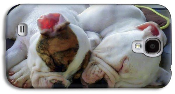 Boxer Galaxy S4 Cases - Bulldog Bliss Galaxy S4 Case by Karen Wiles
