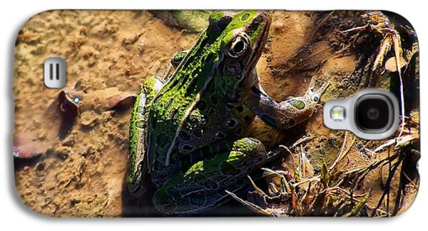 Bullfrog 2 Galaxy S4 Case by Chris Flees