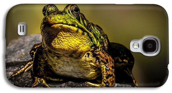 Frogs Photographs Galaxy S4 Cases - Bullfrog Watching Galaxy S4 Case by Bob Orsillo