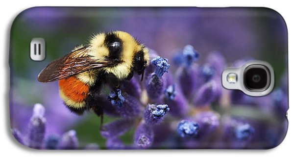 Botanical Galaxy S4 Cases - Bumblebee on Lavender Galaxy S4 Case by Rona Black
