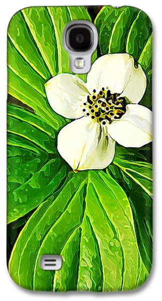 Botanical Galaxy S4 Cases - Bunchberry Blossom Galaxy S4 Case by Bill Caldwell -        ABeautifulSky Photography