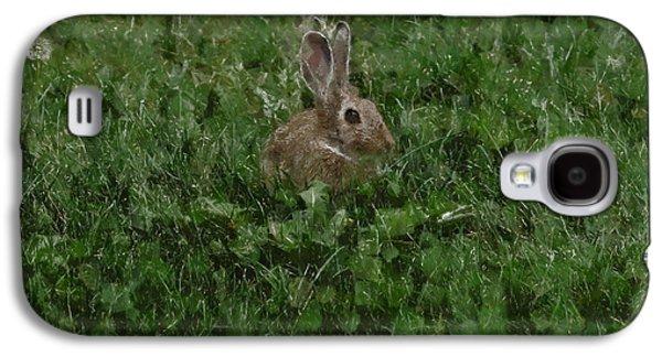Rabbit Digital Galaxy S4 Cases - Bunny Galaxy S4 Case by Ernie Echols