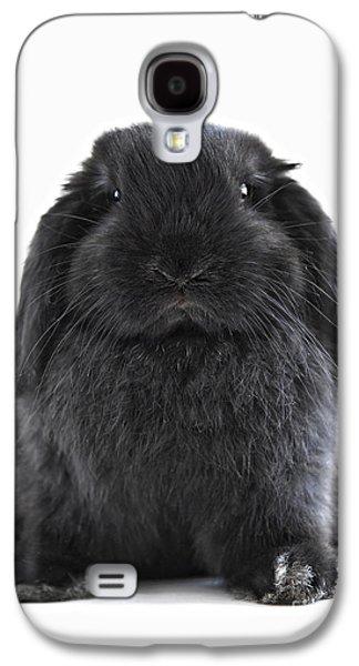 Breed Galaxy S4 Cases - Bunny rabbit Galaxy S4 Case by Elena Elisseeva