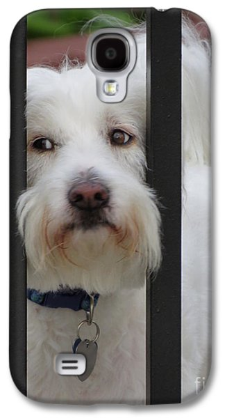 Recently Sold -  - Puppy Digital Galaxy S4 Cases - Busted Galaxy S4 Case by Ella Kaye Dickey