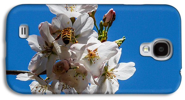Cheekwood Galaxy S4 Cases - Busy Bee Galaxy S4 Case by Robert Hebert