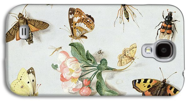 Nature Study Paintings Galaxy S4 Cases - Butterflies moths and other insects with a sprig of apple blossom Galaxy S4 Case by Jan Van Kessel