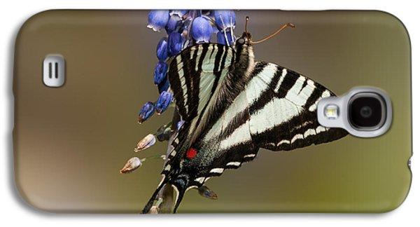 Garden Scene Galaxy S4 Cases - Butterfly Delight Galaxy S4 Case by Lara Ellis