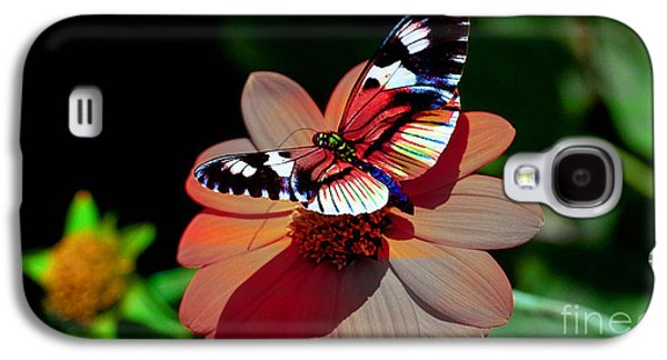 Butterflies Galaxy S4 Cases - Butterfly Dont Fly Away Galaxy S4 Case by Marvin Blaine