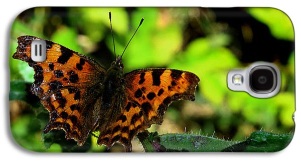 Insects Digital Galaxy S4 Cases - Butterfly Galaxy S4 Case by Martin Newman