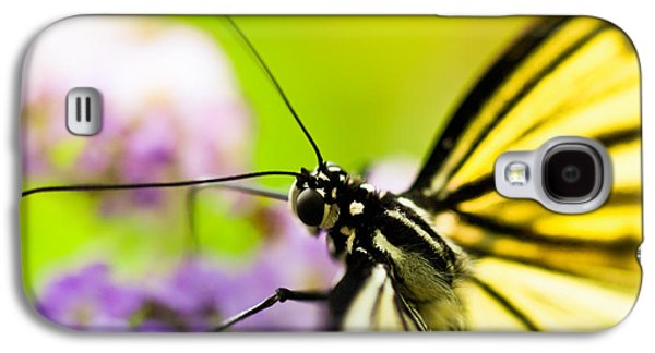 Butterflies Galaxy S4 Cases - Butterfly Galaxy S4 Case by Sebastian Musial