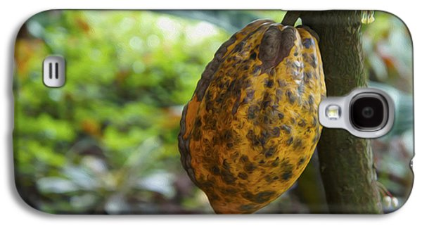 Botany Galaxy S4 Cases - Cacao Plant Galaxy S4 Case by Aged Pixel