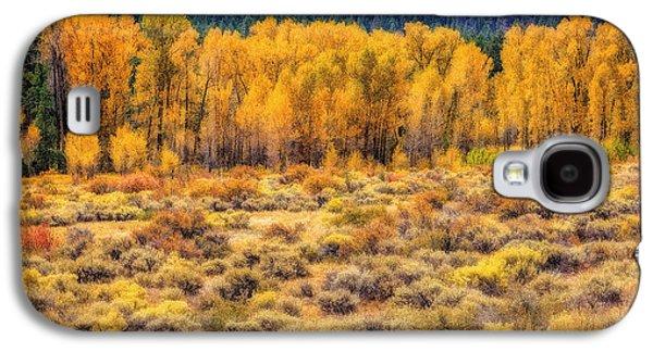 Fort Collins Galaxy S4 Cases - Cache La Poudre River Colors Galaxy S4 Case by Jon Burch Photography