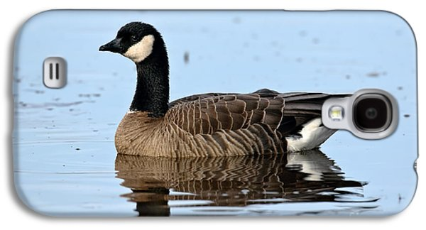 Us Wildllife Galaxy S4 Cases - Cackling Goose In Water Galaxy S4 Case by Anthony Mercieca