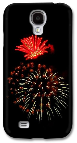 4th July Galaxy S4 Cases - Firework Cactus Flower   Galaxy S4 Case by Adrienne Wilson