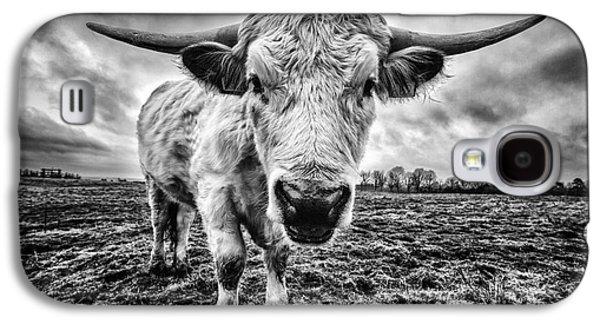 Steer Galaxy S4 Cases - Cadzow White Cow Female Galaxy S4 Case by John Farnan