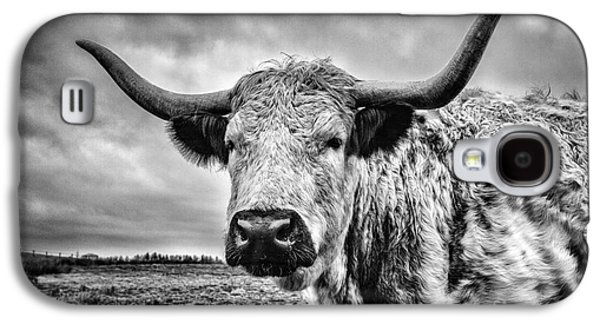 Steer Galaxy S4 Cases - Cadzow White Cow Galaxy S4 Case by John Farnan