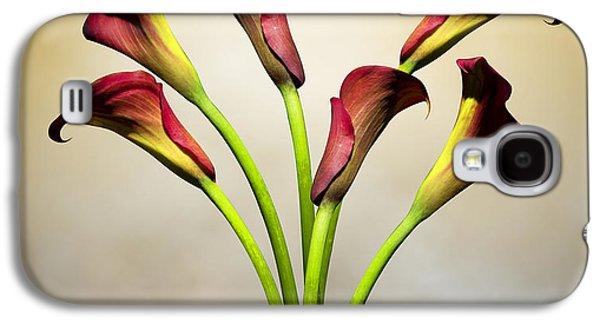 Cala Lily 5 Galaxy S4 Case by Mark Ashkenazi