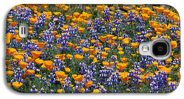 Recently Sold -  - Landscapes Photographs Galaxy S4 Cases - California Golden Poppies Eschscholzia Galaxy S4 Case by Panoramic Images