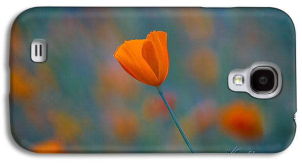 Flowers Photographs Galaxy S4 Cases - California Poppy Galaxy S4 Case by Anthony Bonafede