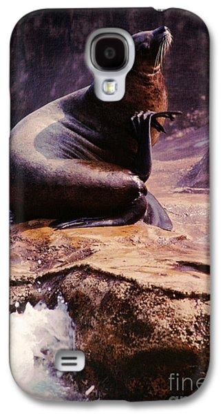 Ocean Mammals Galaxy S4 Cases - California Sea Lion Raising a Flipper Galaxy S4 Case by Anna Lisa Yoder